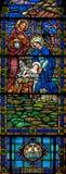 befläckt glass nativity Royaltyfri Fotografi
