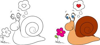 Free Before And After Kawaii Drawing Of A Little Snail Looking At A Flower, For Children`s Coloring Book Or Valentine`s Day Card Stock Photography - 139957202