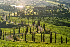 Before Sunset In Tuscany Royalty Free Stock Image