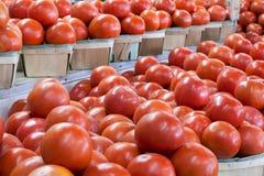 befsztyków pomidory obraz stock
