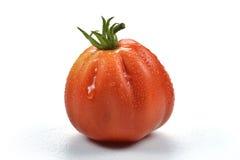 Befsztyka pomidor z kroplami 4 Zdjęcia Stock