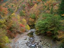 Befu Valley in autumn Royalty Free Stock Photo