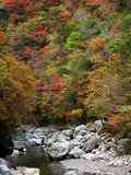 Befu Valley in autumn Stock Image