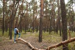 Begåvad gitarrist som spelar skogen som fotvandrar begrepp arkivbilder