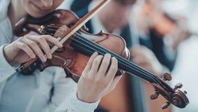 Begåvad violinist som spelar med orkesteren royaltyfria foton