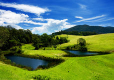 Bega Valley Meadows Royalty Free Stock Photos