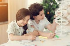 Begeisterte positive Kinder, die zusammen studieren Lizenzfreie Stockbilder