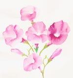 Begeisterung ist mutig und von den Blumen, die Blätter uneingeschränkt und blüht Kunstdesign Lizenzfreies Stockfoto