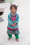 Beggar girl in Leh, India Stock Image