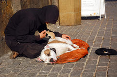 Beggar, His Dog and Rat Royalty Free Stock Image