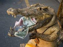 Begging stuffed crocodile Royalty Free Stock Image