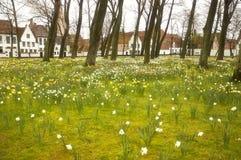 Begijnhof in Brugge royalty-vrije stock afbeelding
