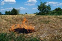 Beginnen Sie ein Feuer auf einem Weizengebiet Stockfoto