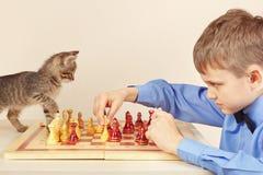 Beginner grandmaster with kitten plays chess. Royalty Free Stock Photo