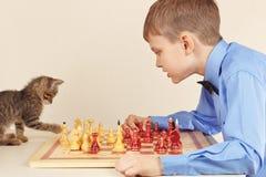 Beginner grandmaster met het gestreepte schaak van katjesspelen royalty-vrije stock foto's