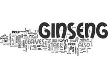 A Beginner S Guide To Ginseng Word Cloud Royalty Free Stock Image