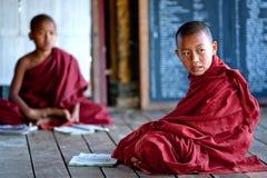 Beginnermonniken, Myanmar Stock Foto