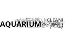 A Beginners Guide To A Clean And Healthy Aquarium Word Cloud Stock Illustration