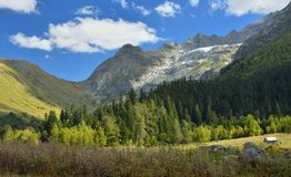 Beginning autumn Royalty Free Stock Images
