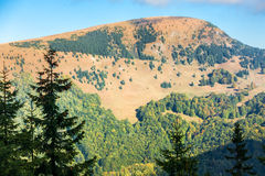 Beginning of autumn in the Greater Fatra National park Royalty Free Stock Images