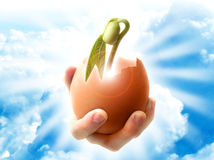 The beginning of new life. A hand holding a broken shell egg and a germinated plant on the background of sunlight and blue sky with clouds royalty free stock image