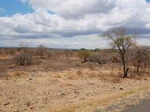 The beginning of the rainy season in Africa. Cloudy sky in Tanzania, Africa, to meet adventures, safaris, Tarangiri, Ngorongoro, the mountains, Africa, Safari in royalty free stock photography