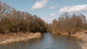 The beginning of spring. wild fast river among the thickets stock video footage