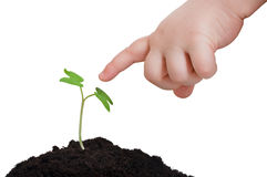 The beginning of two lifes. Ecology concept. Baby reaches with his finger to little plant, sprout. Ecology concept to Earth day royalty free stock images