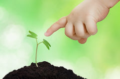 The beginning of two lifes. Ecology concept. Baby reaches with his finger to little plant, sprout. Ecology concept to Earth day stock image