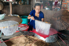 The beginning of Vietnamese Spring Rolls Royalty Free Stock Image