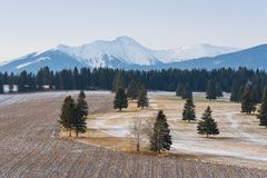 The Beginning Of Winter In The High Tatras, Poprad Valley, Slovakia. Winter Landscape Of Tatra Mountains. Snow-Covered Valley With. Plowed Field And Trees At Stock Images
