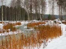 Beginning of Winter on the Saimaa Lakeside Stock Photography