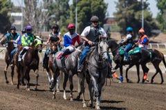 Begleiter-Ponys und Jockeys stockfotos