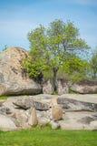 Beglik Tash - formation de roche de nature, un sanctuaire préhistorique de roche Photographie stock libre de droits