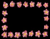 begonia σύνορα στοκ φωτογραφίες με δικαίωμα ελεύθερης χρήσης