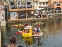 Begonia Capitola φεστιβάλ Στοκ εικόνα με δικαίωμα ελεύθερης χρήσης