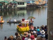 Begonia Capitola φεστιβάλ Στοκ εικόνες με δικαίωμα ελεύθερης χρήσης