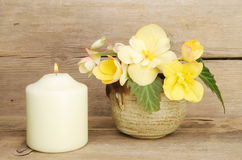 Begonia flowers and candle Stock Image