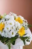 Begonia and gerbera flowers Stock Photos