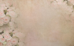 Begoniabloem op uitstekende document achtergrond Stock Afbeeldingen