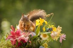 Begräbnis von Blumen Lizenzfreie Stockfotografie