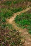 Begränsa den leriga vägen i ett gräsfält royaltyfria foton