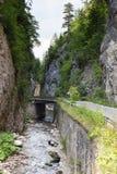 Begränsa den motoriska vägen längs en bergflod i klyftan av de Rhodope bergen Arkivfoto