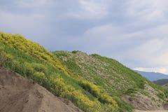 Begrüßen Sie zum Britisch-Columbia Kanada - die freie Natur Lizenzfreie Stockbilder