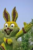 Begrüßtes Kaninchen lizenzfreies stockbild