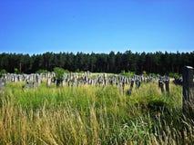 Begraafplaats in Brody, de Oekraïne Stock Afbeeldingen