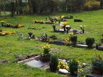 Begraafplaats in de lente in de zon Royalty-vrije Stock Foto's