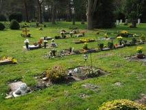 Begraafplaats in de lente in de zon Royalty-vrije Stock Foto