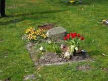Begraafplaats in de lente in de zon Stock Foto