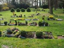 Begraafplaats in de lente in de zon Royalty-vrije Stock Afbeeldingen